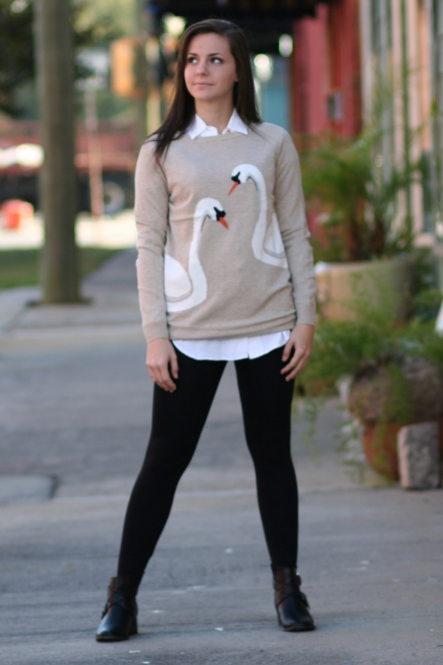 Animal Critter Sweater Kissing Swans on Oatmeal