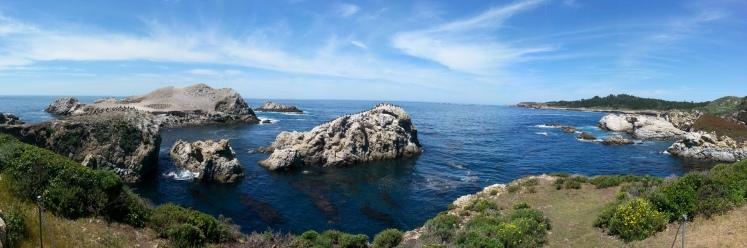 Point Lobos State Reserve - Carmel, CA