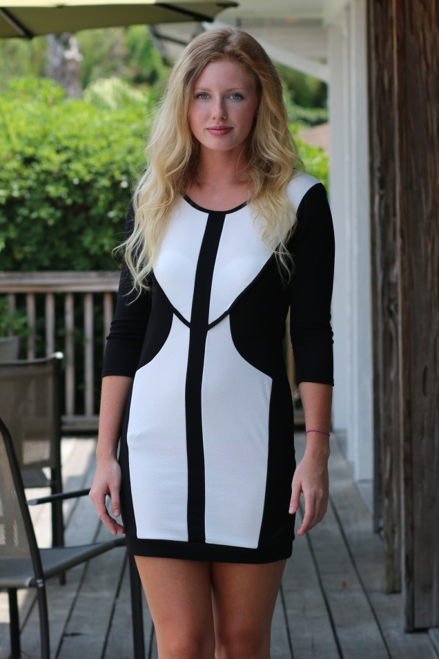 Wild Souls - Black White Color Blocked Bodycon Dress - shopwildsouls.com